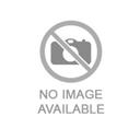 Фото:Заболевания яичек у мужчин